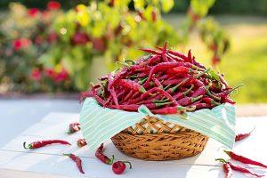 fototapety do kuchni - chilli